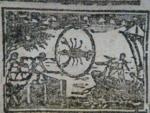 IMGP9567