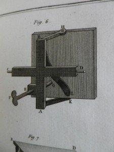 IMGP6542