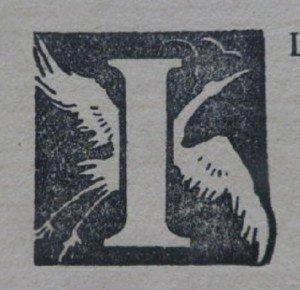 IMGP8651